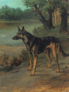 Art Prints of German Shepherd at Guard by Maud Earl