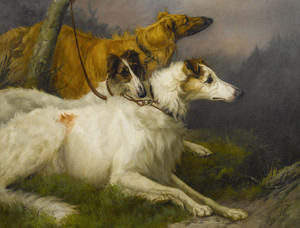 Art Prints of On Leash, the Borzoi's Korotai, Zeneitra and Piolla by Maud Earl