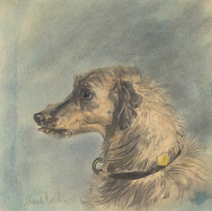 Art Prints of Scottish Deerhound by Maud Earl