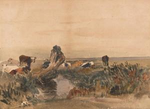 Art Prints of Cattle by a Stream by Peter De Wint
