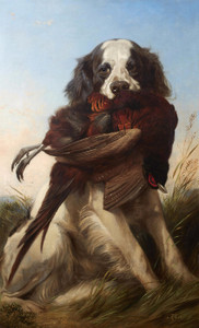 Art Prints of Setter with a Pheasant by Richard Ansdell
