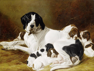 Art Prints of The New Litter by Richard Ansdell