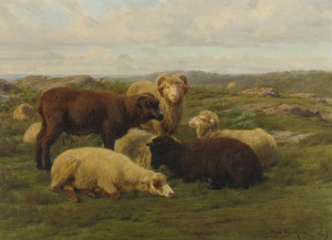 Art Prints of Sheep in a Meadow by Rosa Bonheur
