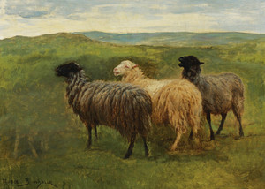 Art Prints of Three Sheep in a Landscape by Rosa Bonheur