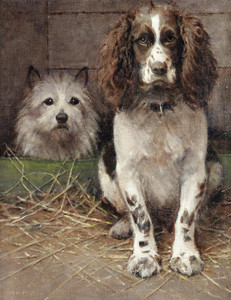 Art Prints of Spaniel and Cairn by Samuel Fulton