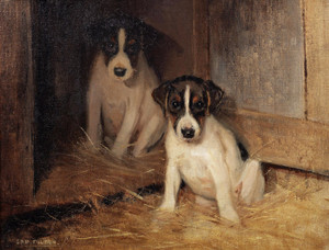 Art Prints of Two Jack Russell Terrier Puppies by Samuel Fulton
