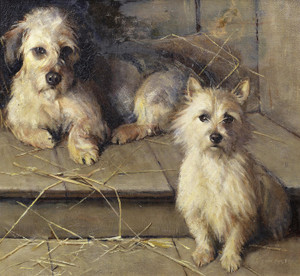 Art Prints of Dandie Dinmont and Terrier by Samuel Fulton