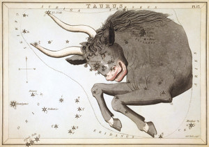 Art Prints of Taurus, Plate 17, View of the Heavens by Sidney Hall