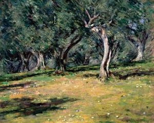 Art Prints of Olive Grove, Capri by Theodore Robinson