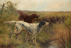 Art Prints of An English and Irish Setter in a Landscape by Thomas Blinks