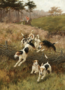 Art Prints of The Pack Splits by Thomas Blinks