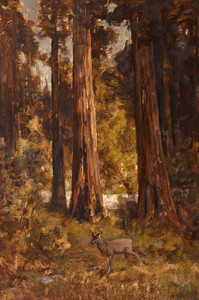 Art Prints of Redwood Grove with Deer by Thomas Hill