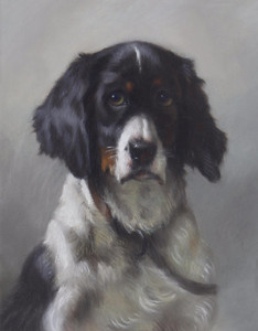 Art Prints of Portrait of a Spaniel by Thomas William Earl