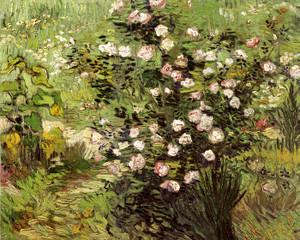 Art Prints of Flowering Rosebushes by Vincent Van Gogh