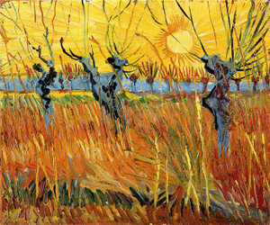 Art Prints of Pollard Willows with Setting Sun by Vincent Van Gogh