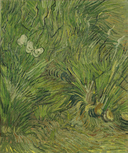 Art Prints of Garden with Butterflies by Vincent Van Gogh