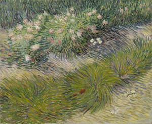 Art Prints of Grass and Butterflies by Vincent Van Gogh