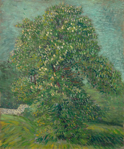 Art Prints of Horse Chestnut Tree in Blossom by Vincent Van Gogh