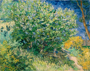 Art Prints of Lilac Bush by Vincent Van Gogh