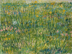 Art Prints of Patch of Grass by Vincent Van Gogh