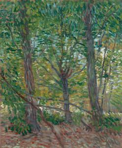 Art Prints of Trees, 1887 by Vincent Van Gogh