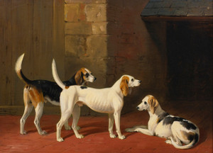 Art Prints of Three Foxhounds in a Paved Kennel Yard by William Barraud