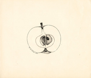 Art Prints of Red Transparent Apple by William Henry Prestele