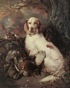 Art Prints of English Setter and Gordon Setter with Dead Game by William Woodhouse