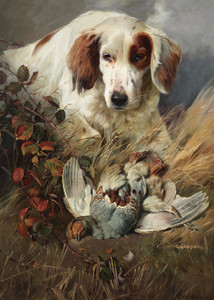 Art Prints of Setter with Game by William Woodhouse