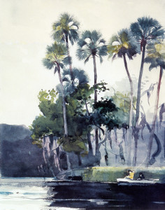Art Prints of Homosassa River by Winslow Homer
