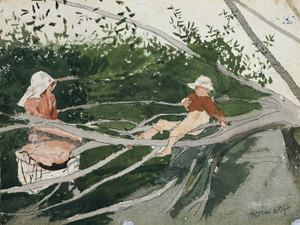 Art Prints of Out on a Limb by Winslow Homer