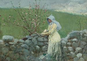 Art Prints of Peach Blossoms by Winslow Homer
