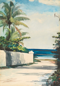 Art Prints of Road in Nassau by Winslow Homer