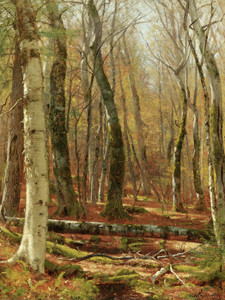 Art Prints of Wooded Interior by Worthington Whittredge