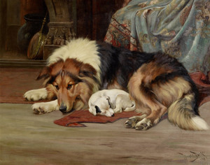 Art Prints of A Cosy Spot by Wright Barker
