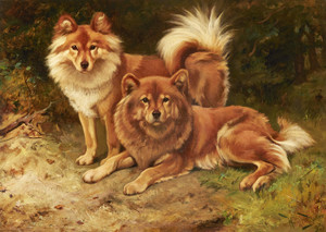 Art Prints of Two Finnish Spitz by Wright Barker