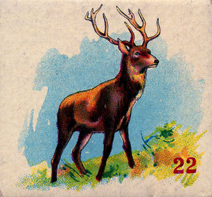 Art Prints of Game Piece, Stag, Vintage Game Pieces & Playing Cards
