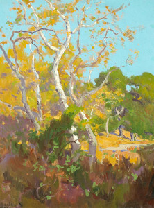 Art Print of A Clearing in an Arroyo by Elmer Wachtel