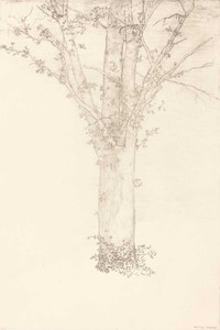 Prints and cards of Tree, 1892 by Odilon Redon
