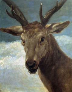 Art prints of Deer Head by Diego Velazquez