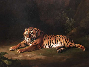 Art prints of Portrait of the Royal Tiger by a Lion by George Stubbs