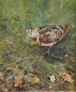 Art prints of Eurasian Woodcock by Bruno Liljefors