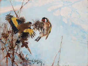Art prints of Goldfinches by Bruno Liljefors