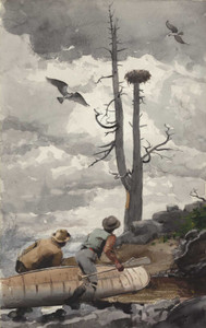 Art prints of Osprey's Nest by Winslow Homer