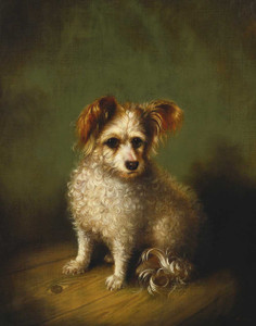 Art prints of A Terrier, My Dog by Susan Catherine Waters