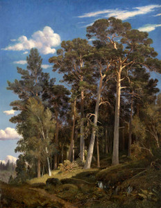 Art prints of Pine Forest III by Ivan Shishkin
