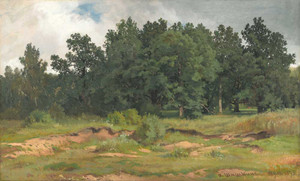 Art prints of Oak Wood in a Gray Day by Ivan Shishkin