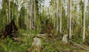 Art prints of Pine Forest (a Study) by Ivan Shishkin