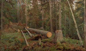 "Art prints of Study for the painting ""Lumbering"" by Ivan Shishkin"