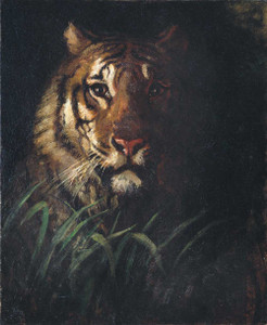 Giclee prints of Tiger by Abbott H. Thayer
